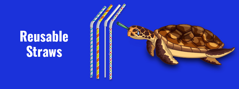Reusable Straws – The Solution To Plastic